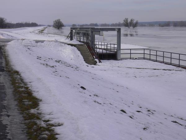 Der Deichdurchstich der Oder für den Abfluß in die Alte Oder bei Güstebieser Loose; Foto: H. Domnick